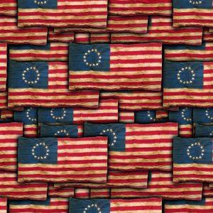 Betsy Ross Flag 22