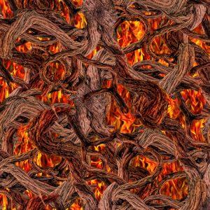 Twisted Blaze