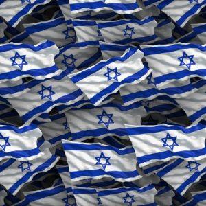 Israel Flag 22
