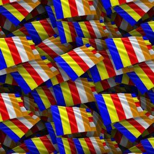 Buddhist Flag 23