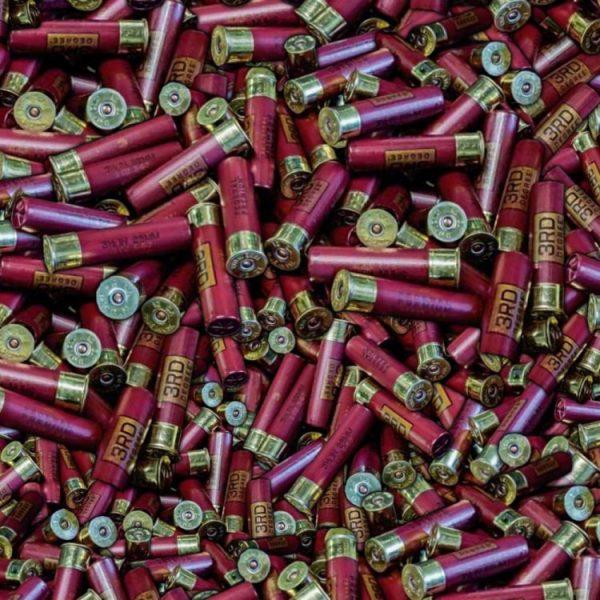 Shotgun Shells 22