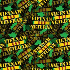 VietNam Veteran 22