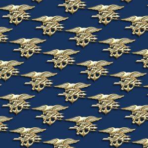Navy Seals 24