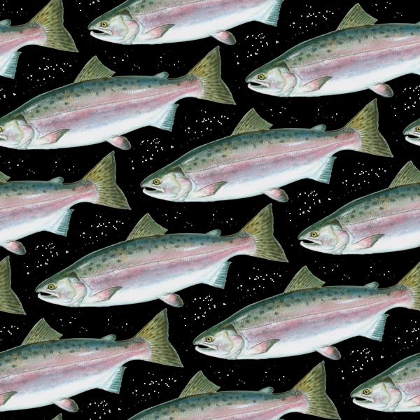Pink Salmon 22