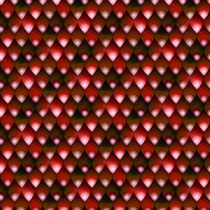 Red Snake Skin 23