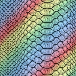 Rainbow Snake Skin