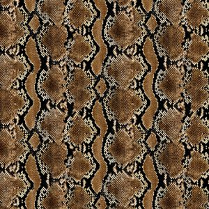 Pacific Python Snake Skin