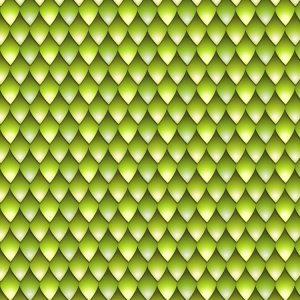 Green Mamba Snake Skin 24
