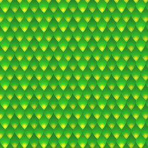 Green Mamba Snake Skin 23