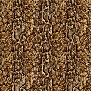 Brown Python Snake Skin