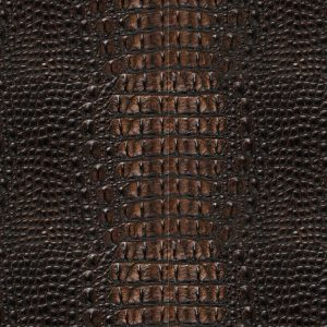 Alligator Leather Brown