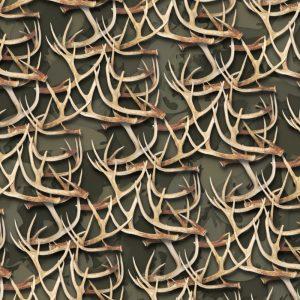 White Tail Deer Antlers 29