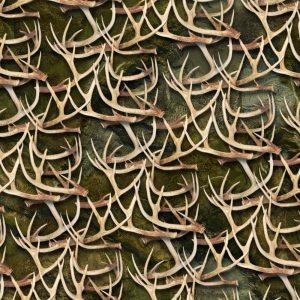 White Tail Deer Antlers 28