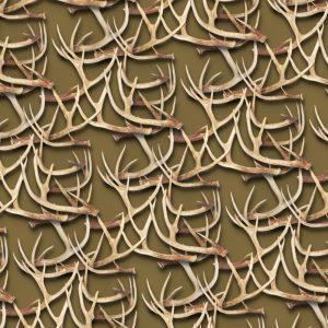 White Tail Deer Antlers 25