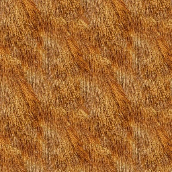 Red Fox Fur 23