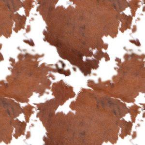 Longhorn Cowhide 25