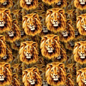 Lions 20