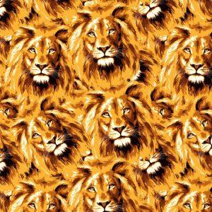 Lions 21