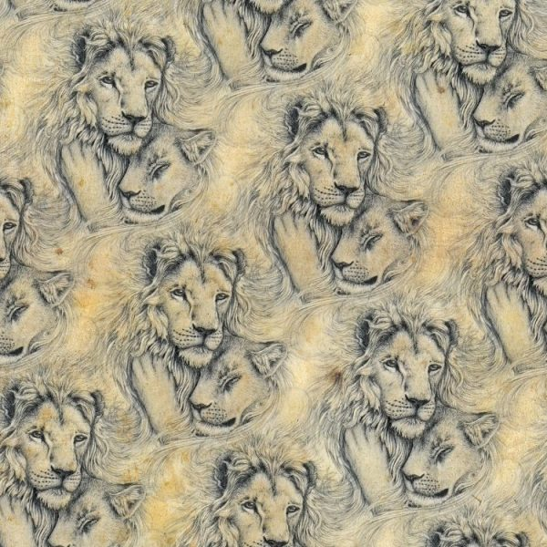 Lion Love 25