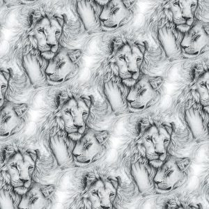 Lion Love 24