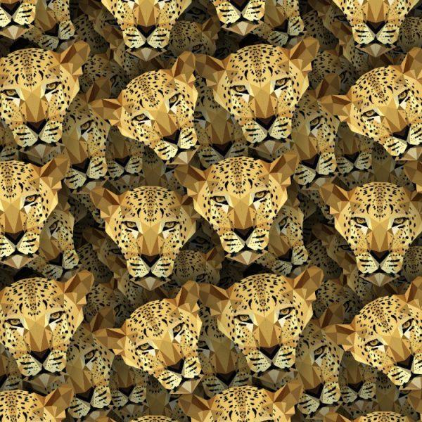 Leopards 22