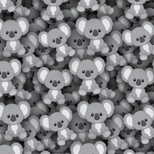 Koalas 22