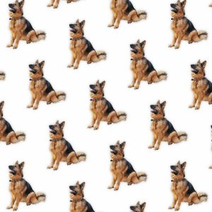 German Shepherds 22