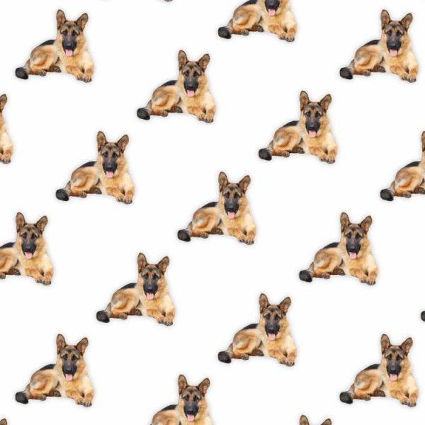 German Shepherds 23