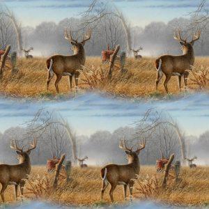 Field Deer 24
