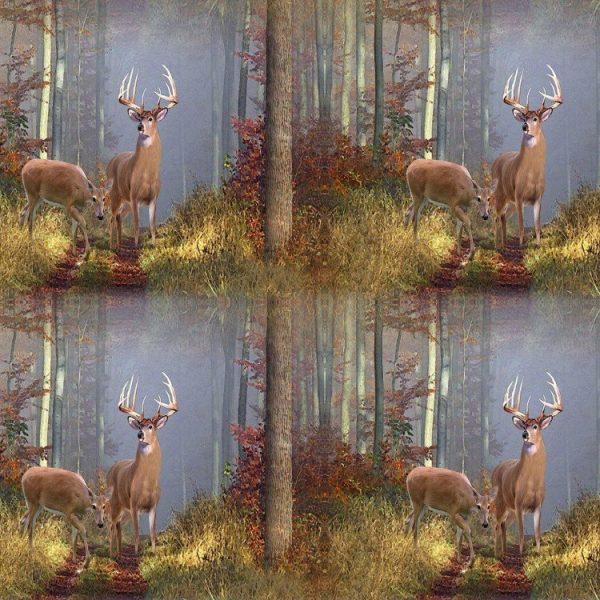 Deer in the Woods 22