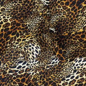 Crazy Leopard