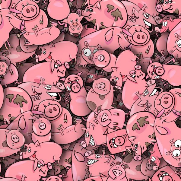 Cartoon Pigs 25