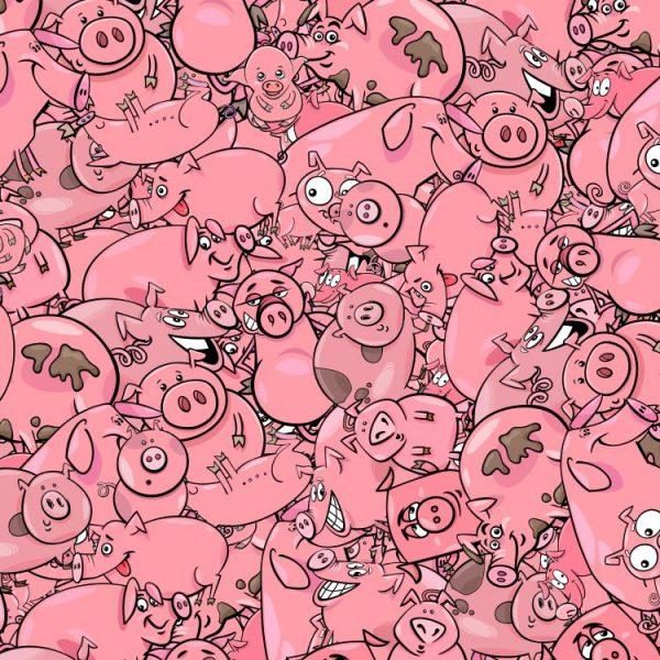 Cartoon Pigs 24