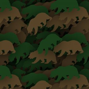 Bear Camouflage