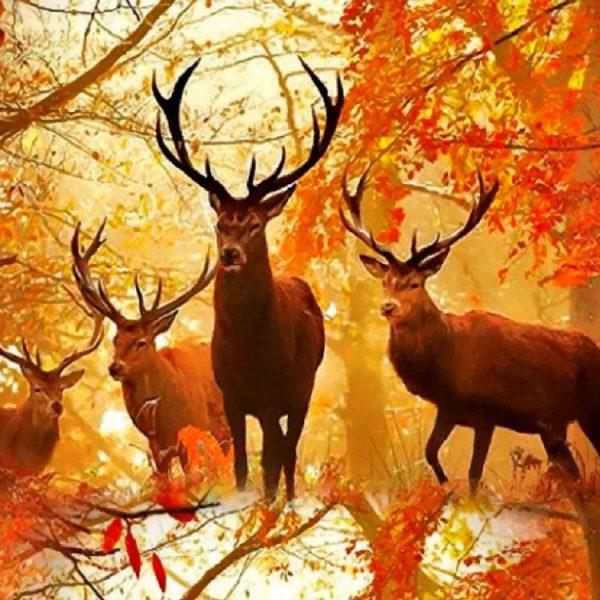 Autumn Deer