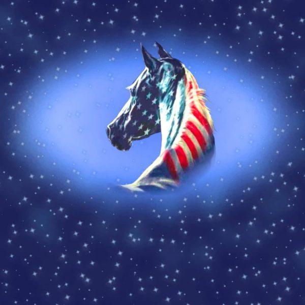 American Horse 11x16