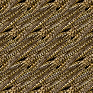 Pheasant Feathers 23
