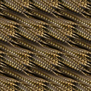 Pheasant Feathers 22