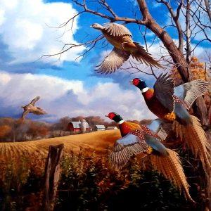 Pheasant Fall