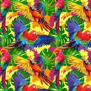Parrots 22