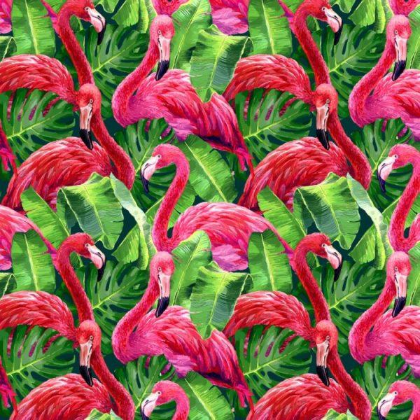 Flamingo 22