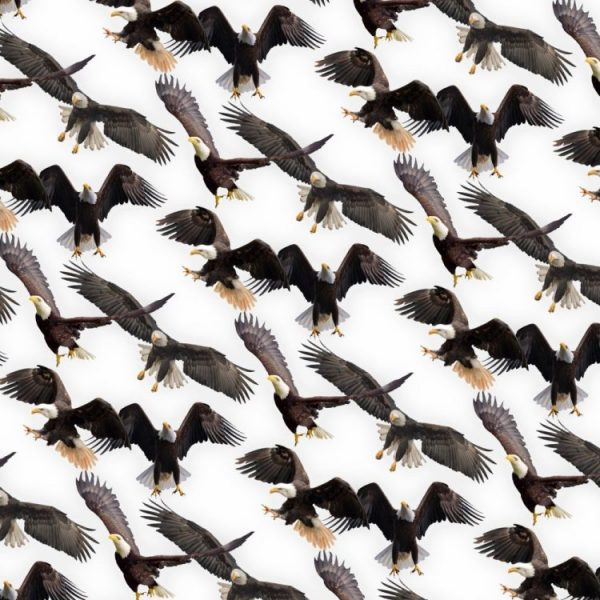 Eagles 23