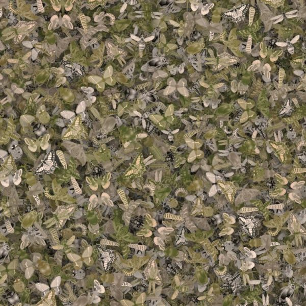 Insect Camo 22