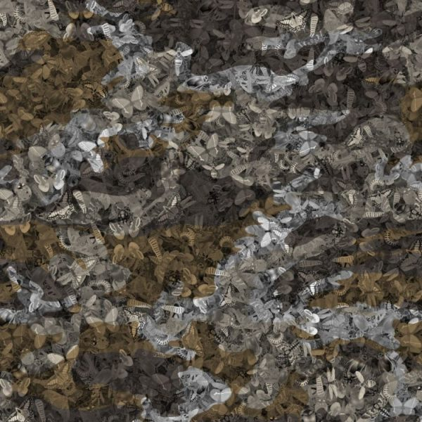 Insect Camo 23