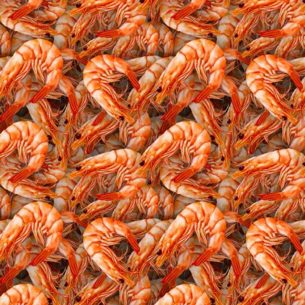Shrimp 23