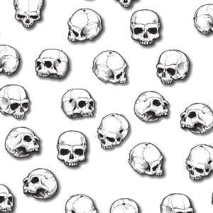 Hand Drawn Skulls Study 22