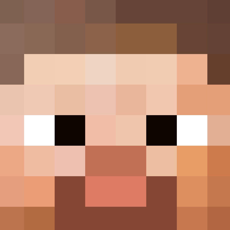 Minecraft Steve Head Pattern Crew