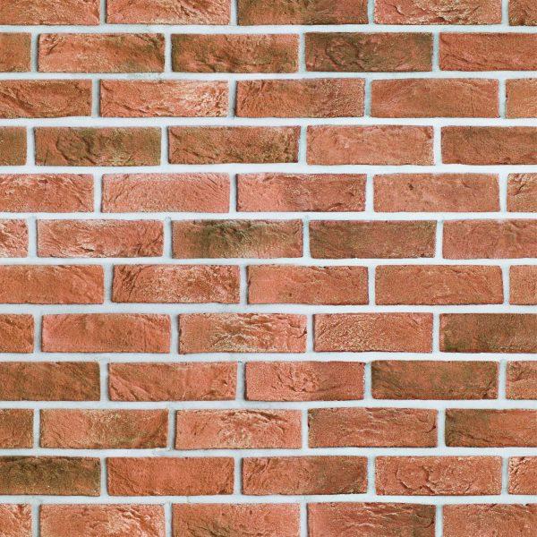 Bricks 22