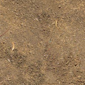 Dirt 22