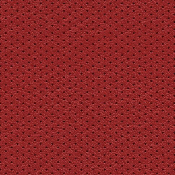 Perforated Leather 24